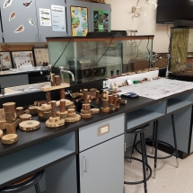 This working laboratory of the AGFC's Arkansas Delta Rivers Nature Center includes blocks that assist in learning about trees in the Delta bottomlands.